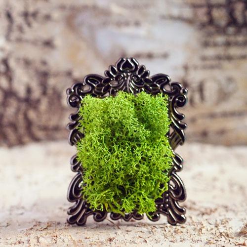 Marturie mini-tablou licheni